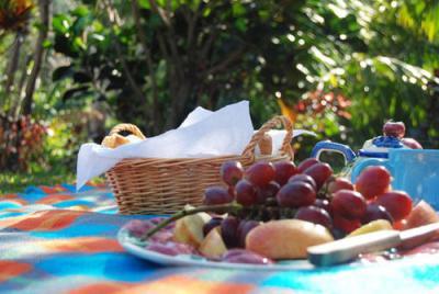 Экологический пикник
