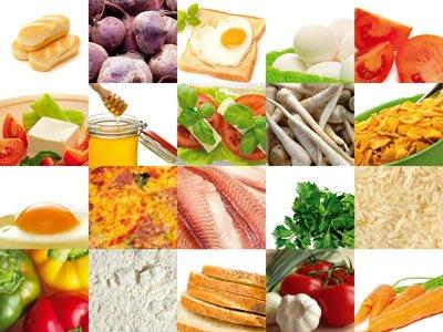 Принципы питания по Голтису