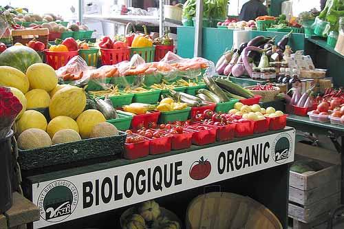 Органические продукты - что это такое