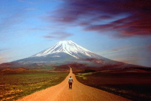 Вершина и Путь