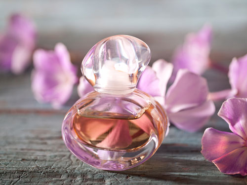 факты об ароматах