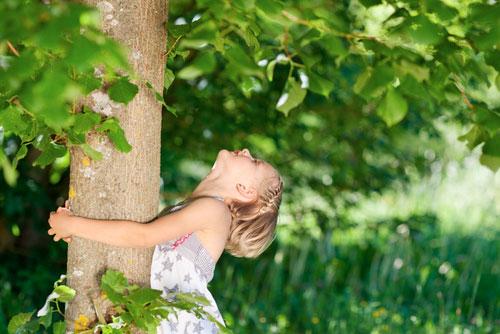 Экологический стиль: единение человека и природы
