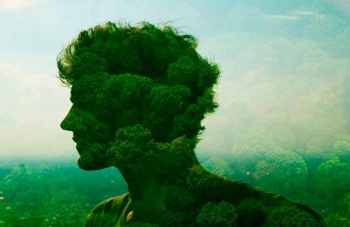 Связь человека с природой