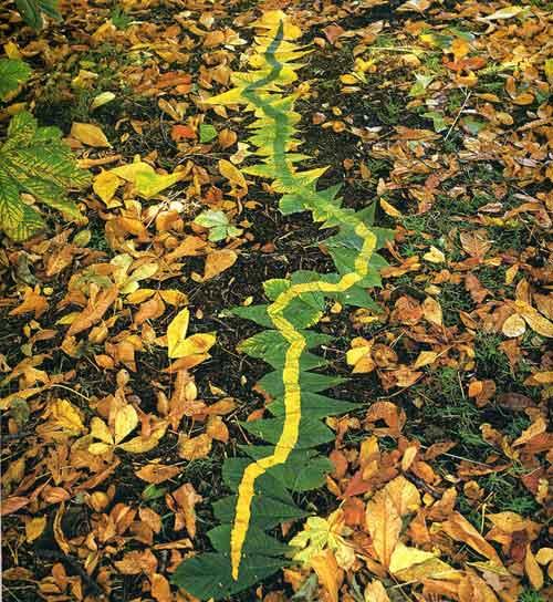 Креативная осень: что можно сделать с опавшими листьями