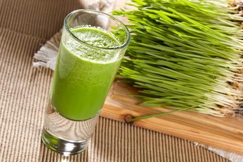 Польза проростков пшеницы для крастоты и здоровья