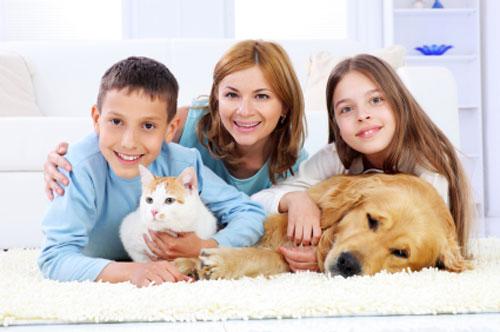 Как выбрать животное для ребенка