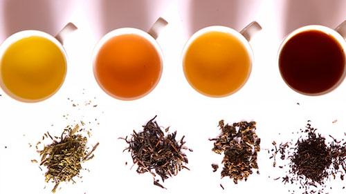 Секретные свойства чая