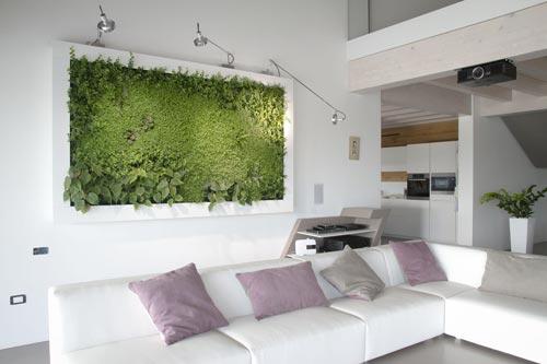 Зонирование пространства растениями. Эко-стена