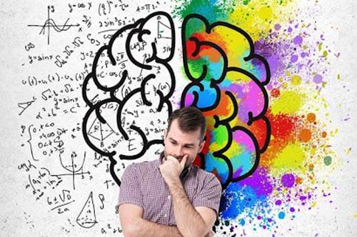 Эмоциональный интеллект. Разум и чувства