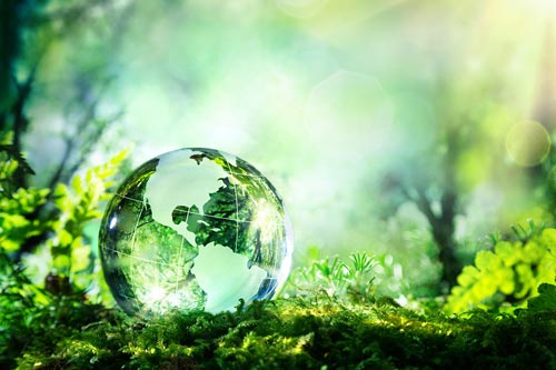 Image result for экологическая безо